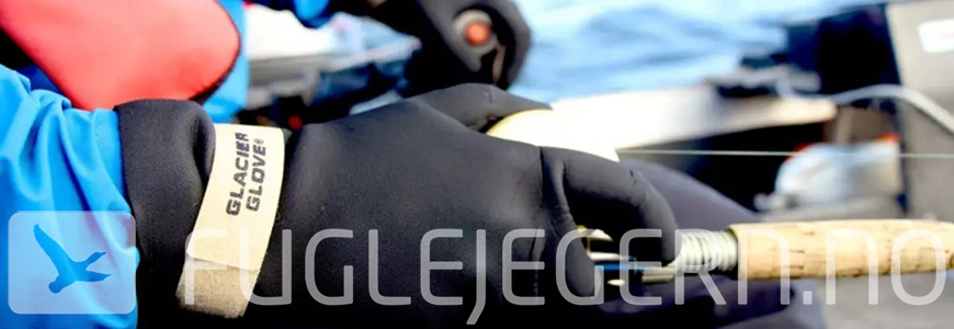 Hansker - Glacier Glove
