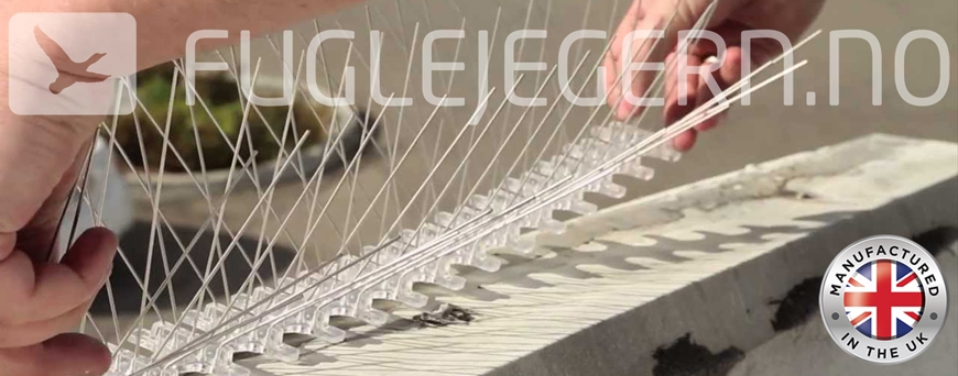 Fuglepigger / Fuglevaier / Fuglesperre